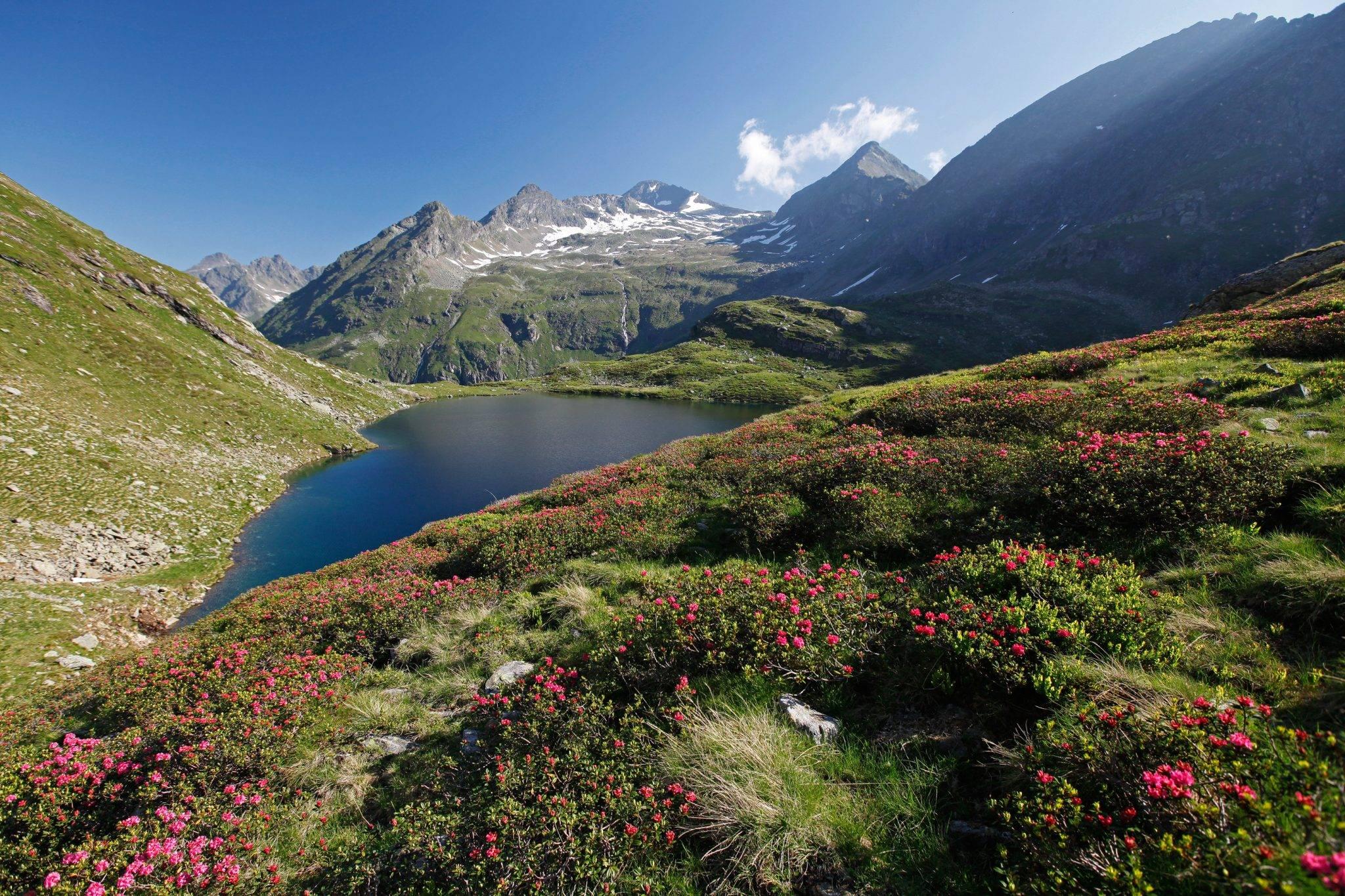 Bergwelt rund um Haus im Ennstal und Schladming